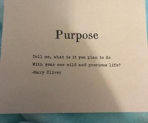 life and purpose image