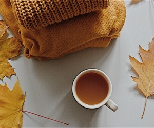 sweater, autumn, and cd image