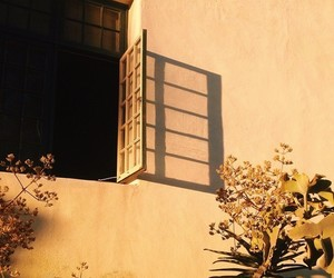 window, yellow, and aesthetic image