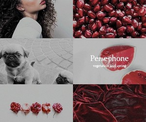 aesthetic, edit, and pomegranate image