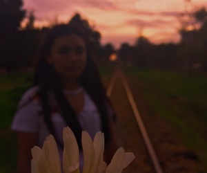 flower, goals, and train image