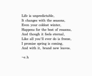 quotes, life, and season image