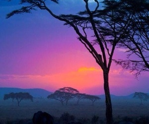 africa, travel, and travels image