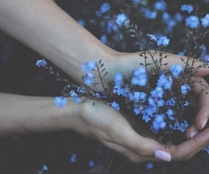 aesthetic, blue, and nature image