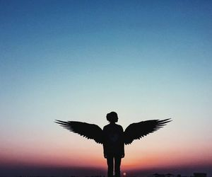 sky and wings image