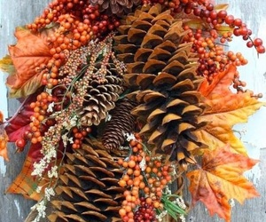 autumn, decoration, and leaves image