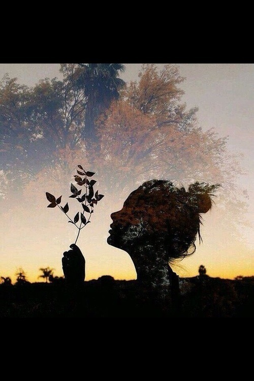 girl, autumn, and tree image