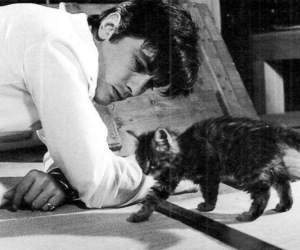Alain Delon and cat image