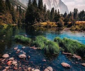 adventure, lake, and trees image