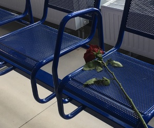 blue, seat, and green image