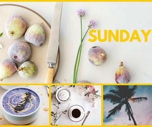 day, Sunday, and photo grid image