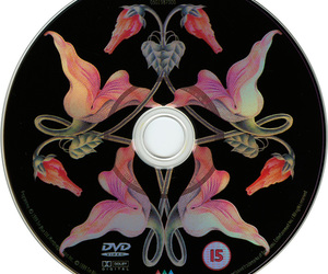 dvd, music, and Pink Floyd image