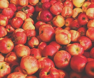 apples, background, and cider image
