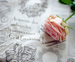 rose, flowers, and newspaper image