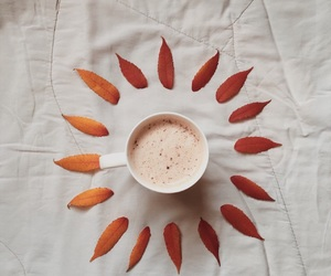 autumn, coffee, and cover image