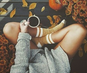 autumn, fall, and socks image