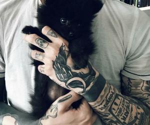 animal, tattoo, and black image