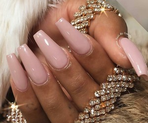 claws nails image