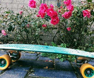 photograpgy, roses, and pennyboard image