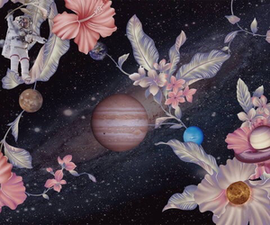 flowers, outer space, and pink image
