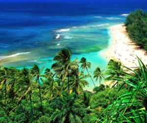 beaches, hawaii, and tropics image