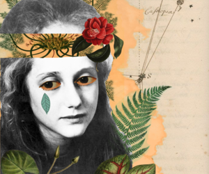 Collage, personal work, and noctua art image