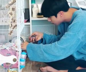 jin, room, and comeback image