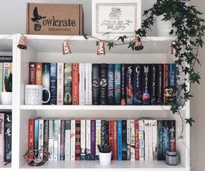 book and bookshelf image