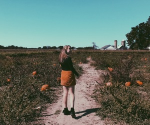 aesthetic, fall, and indie image