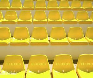 yellow, nikon, and fluxus image