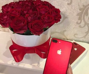 iphone, red, and roses image