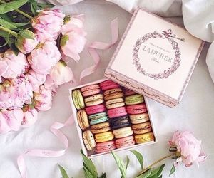 food and macaroons image