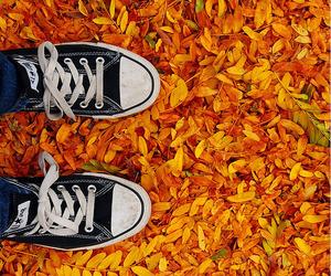 autumn, converse, and orange image