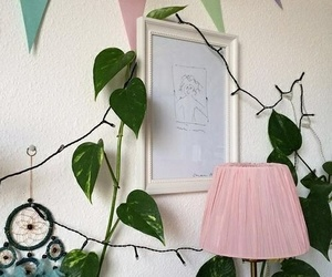 aesthetic, indie, and plants image