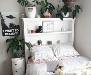room, plants, and aesthetic image
