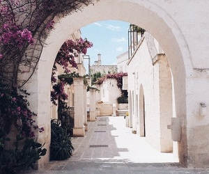 aesthetic, arch, and flowers image