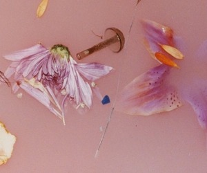 Harry Styles, pink, and flowers image