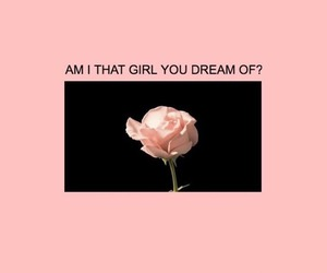 rose, pink, and quotes image