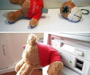 bear, funny, and teddy image