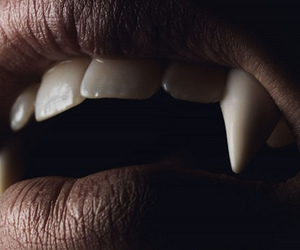 fangs, vampire, and colmillos image