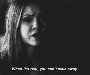 tvd, quotes, and the vampire diaries image
