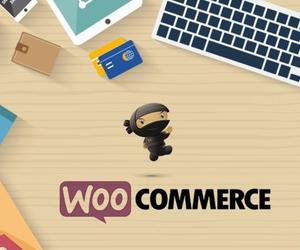 wordpress developers, woocommerce, and woocommerce development image