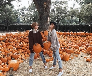 friends, pumpkin, and autumn image