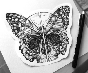 art, butterfly, and cool image