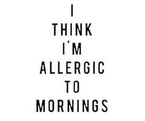 morning, allergic, and quotes image