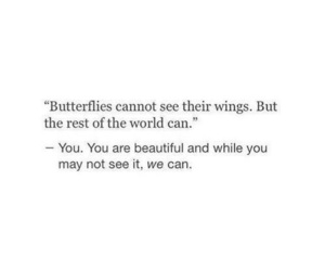 quotes, beautiful, and butterfly image