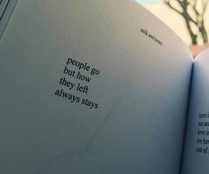 quotes, book, and milk and honey image
