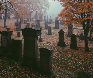autumn, fall, and Halloween image
