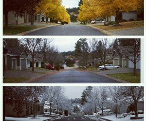 autumn, seasons, and winter image