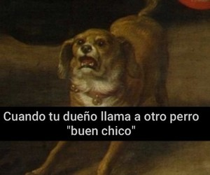 amor, Chica, and chicas image